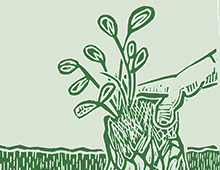 Eco and energy saving initatives help the environment.